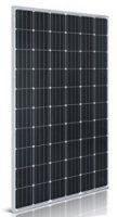 Panel solar WCCSolar de 250W a 24v monocristalino de 60 células