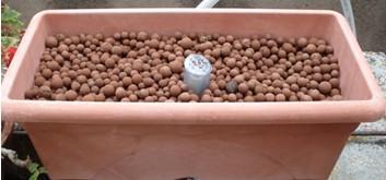 Jardinera con bolitas de arcilla